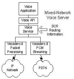 Mixed-Network Voice Server